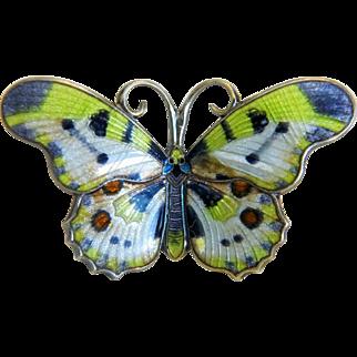 Antique Art Nouveau enamel butterfly brooch, silver 950, ca. 1900