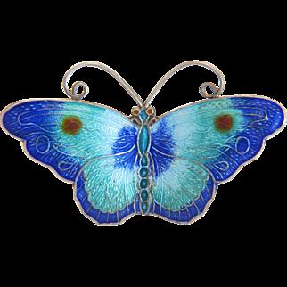 Antique blue Enamel butterfly brooch, silver 800, ca. 1910