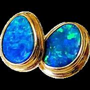 Natural Teardrop Opal 14KT Yellow Gold Earrings