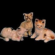 Vintage Bone China Cats To Accompany Your Dolls