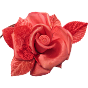Beautiful Peach Rose With Velvet Leaves