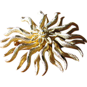 Vintage Textured Goldtone Starfish Brooch Pin