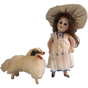 Wonderful Small Borzoi French Fashion Dog for Your Lucky Doll