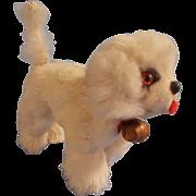 Cute Old White Fur Saint Bernard Dog for your Lucky Doll