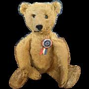 1900 Golden Mohair Teddy Bear