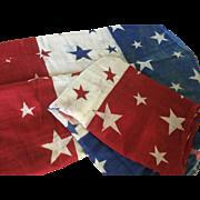 Antique Patriotic Bunting - 7 yards