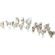 Last of Collection of 19th Century Sheep