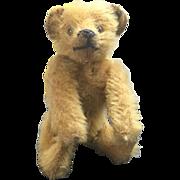 ANTIQUE -  Steiff Bear - Button in ear!