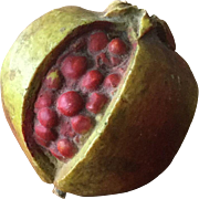 Stone Fruit Pomegranate