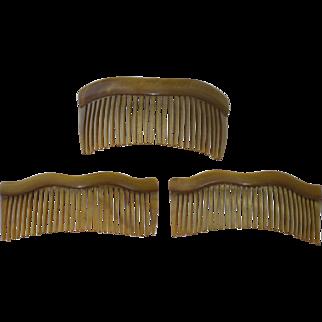Set of 3 Edwardian Celluloid Combs
