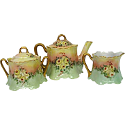 Hand Painted Limoges Rose Decorated Tea Set