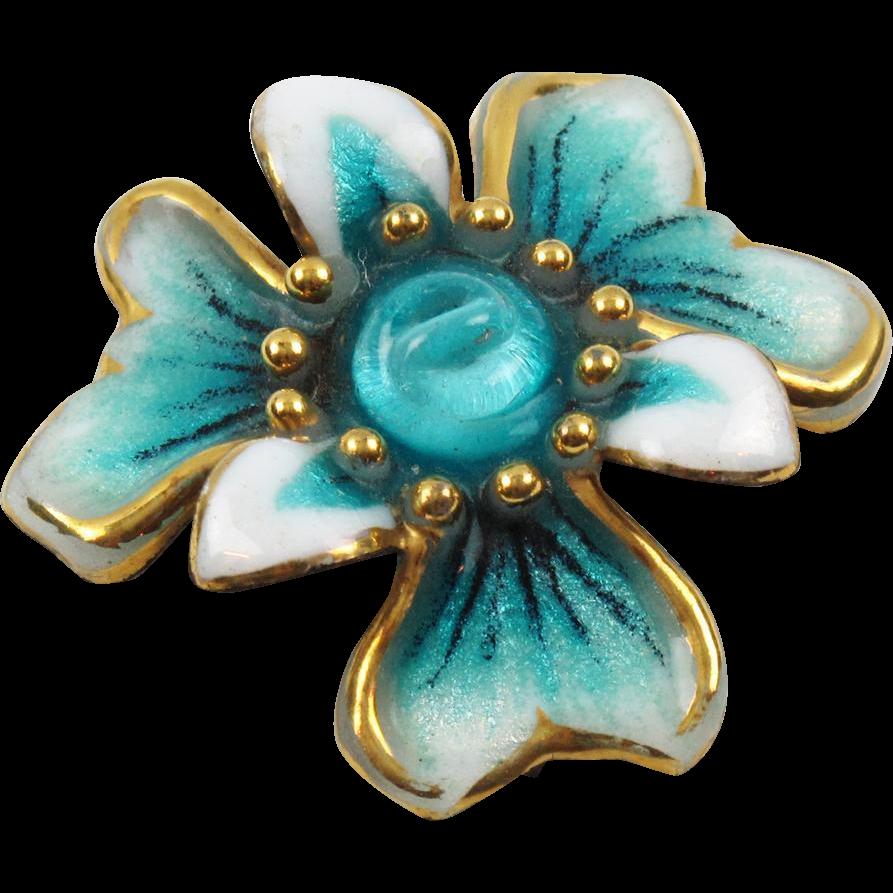 Turquoise Iris Flower Bing Images