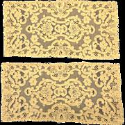 Ecru Needle Lace Panels, Scroll and Flower Pattern