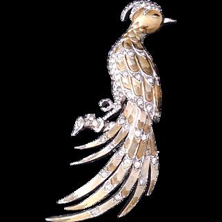 1940 MB Boucher bird of Paradise Enamle pin