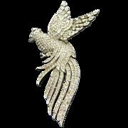 TRIFARI 1941 Lyre bird of Paradise Rhinestone Fur clip PIN !