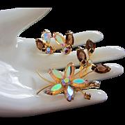 Juliana Topaz AB and Dark Topaz Rhinestone Flower Pin, Earrings Set