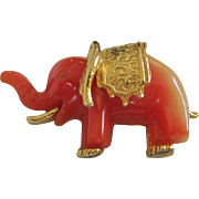 Petite Tangerine Lucite Elephant Pin