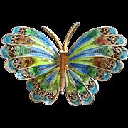 Italian 800 Silver Gold-Wash Enamel Butterfly Pin Brooch