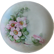 Hutschenreuther Selb Bavaria Hand Painted Plate, Artist Signed,  1912