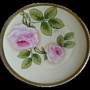 Antique Royal Munich Hand Painted Zeh Scherzer & Co. Plate, Artist Signed
