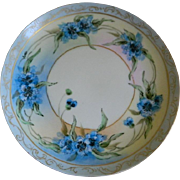 Antique Hutschenreuther Josephine China Bavaria Favorite Hand Painted Plate, 1890  until 1910
