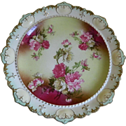 Antique M Z Austria China Plate 1884  Until 1909