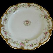 Antique 1903 Theodore Haviland Limoges Plates, Set of 6