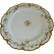 Antique Set of 6, Theodore Haviland Limoges Plates, 1903