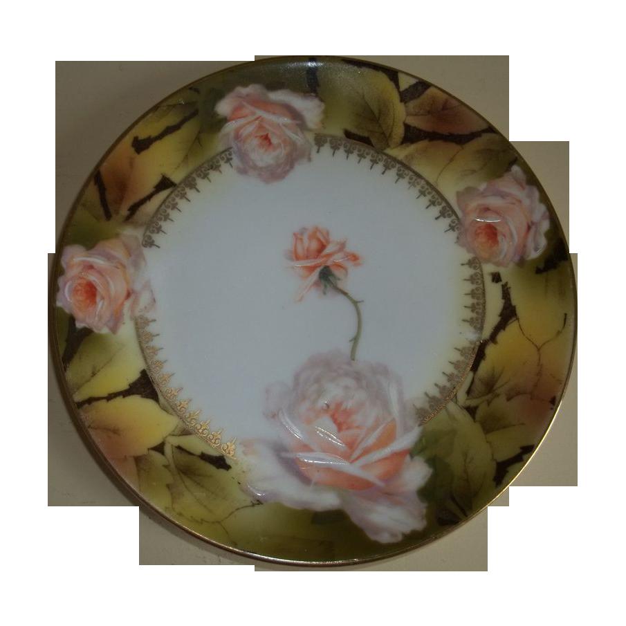 Royal rudolstadt beautiful rose plate prussia 1905 1932 Beautiful plates