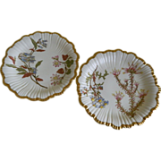 Set of Two Royal Worcester England Bone China, Hand Painted Botanical Motif,  Plates 1890