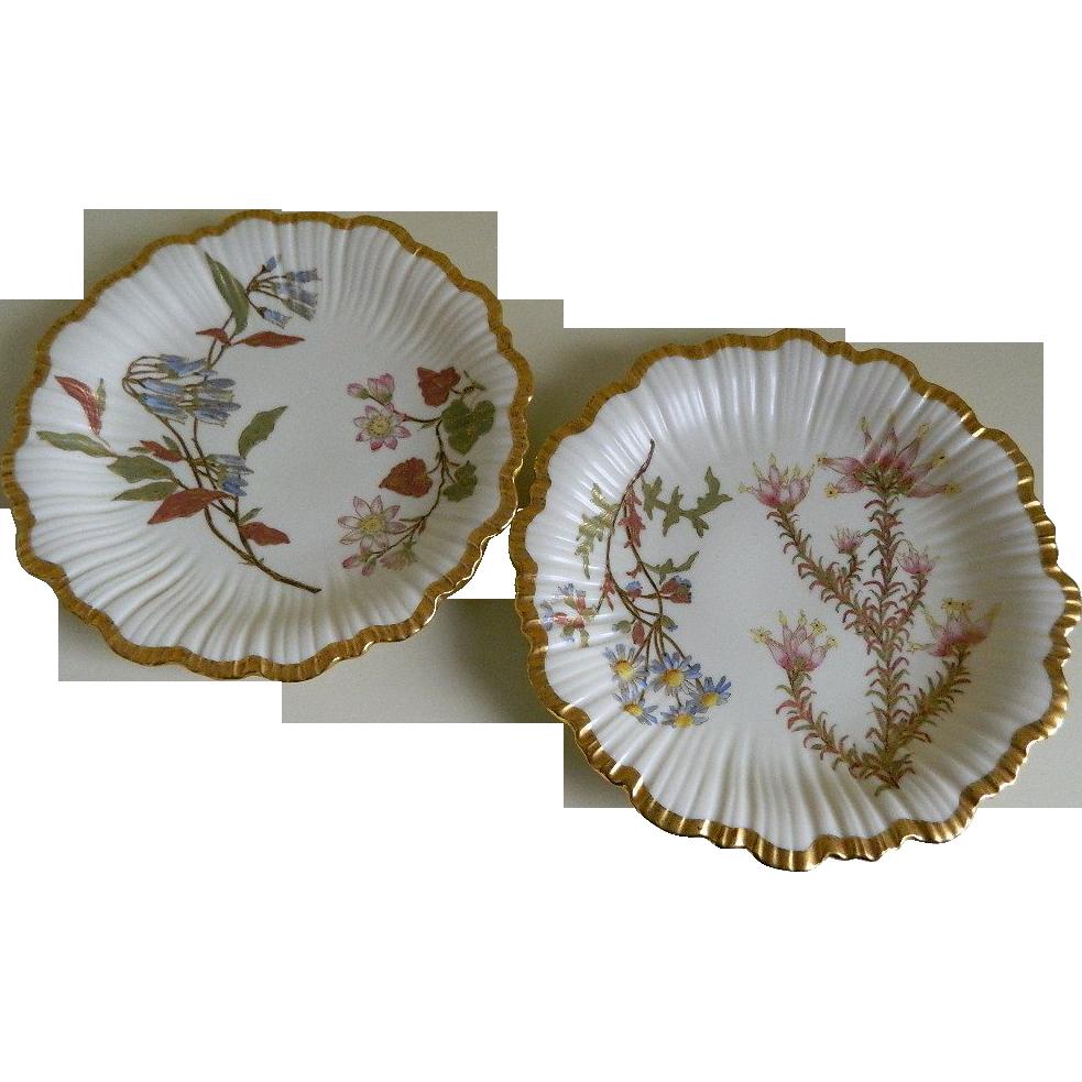 Set of Two Royal Worcester England Bone China, Hand Painted Botanical Motif,  Plates 1890