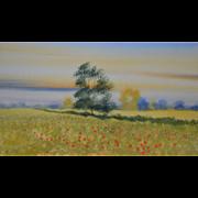 Poppy Fields by Nick Grant