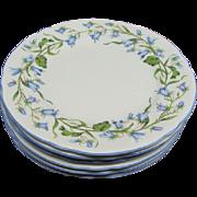 "6 Shelley Harebell Bone China 6"" Dessert Plates"