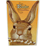 1917 Easter Postcard Big Brown Bunny Rabbit By Nash