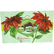 1910 Embossed Christmas Postcard Large Red Poinsettia