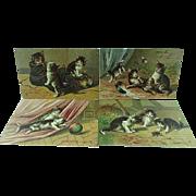 4 Embossed 1910 Mischievous Kittens Postcards