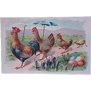 1909 Embossed Easter Postcard Tuck Series 111 Chicken With Umbrella
