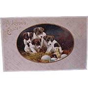 1909 Embossed Easter Postcard Puppies and Baby Chick