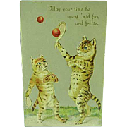 1907 Embossed Greetings Postcard Tiger Cats Playing Tennis