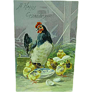 1909 Embossed Easter Postcard Raphael Tuck Series 100 Chicken & Baby Chicks