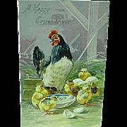 1909 Embossed Easter Postcard Raphael Tuck Series 100 Chicken & Baby Chicks