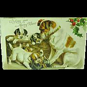 1905 Nister Christmas Postcard Of Dog & Her Pups No. 528