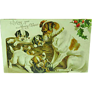 1905 Nister Christmas Postcard Of Dog & Her Pups No. 528