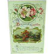 1912 Embossed Happy Birthday Postcard By John Winsch no. 233 Pink Roses