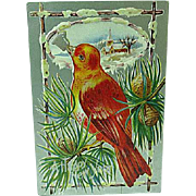 1909 Embossed New Year Postcard Colorful Bird Ringing a Bell