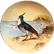 RARE Comte D Artois Limoges Game Bird Cabinet Plate Signed Louis Ca 1920                         eBay TALK: Ge