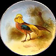 RARE Comte D Artois Limoges Game Bird Cabinet Plate Signed Louis Ca 1920