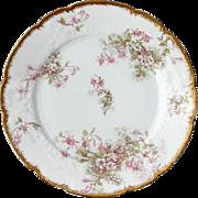 Antique C H Field Haviland Limoges Floral Plate, Circa 1890