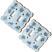 Pair Of Vintage Hand-Painted Porcelain Switch Plates, Circa 1940