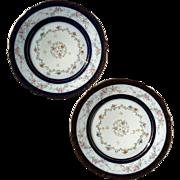 Pair Of Antique French Haviland Limoges Porcelain Plates